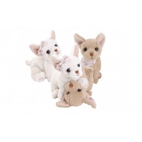 Peluches et doudous Peluches 2 chiens, Chihuahua de Bukowski