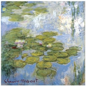 Sachets parfumés Sachet parfumé Rose - Nympheas Claude Monet de Le Blanc