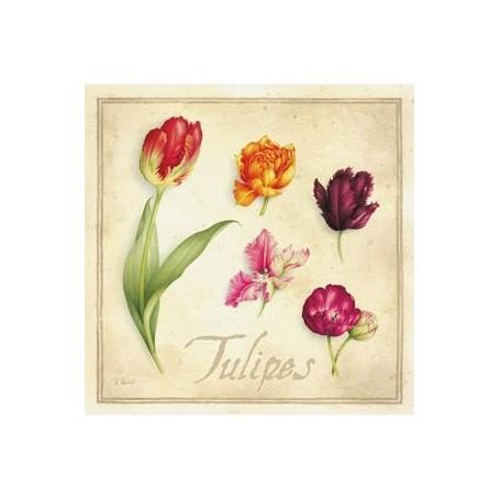 Carte postale, Tulipes van La Boutique in Parijs bij Soap and the City, zepen, parfums, wierook, kaarzen en knuffels