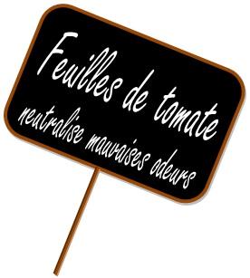 Feuille de Tomate savon, Autour du Bain, savon Paris, savonnerie, boutique de savon